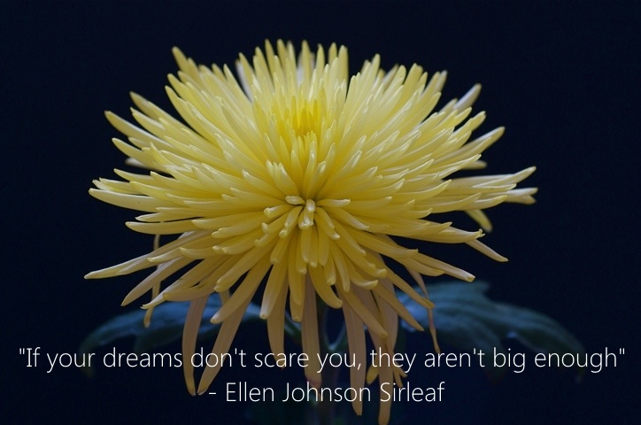Marketing Quotes - If your dreams don't scare you, they aren't big enough - Ellen Johnson Sirleaf