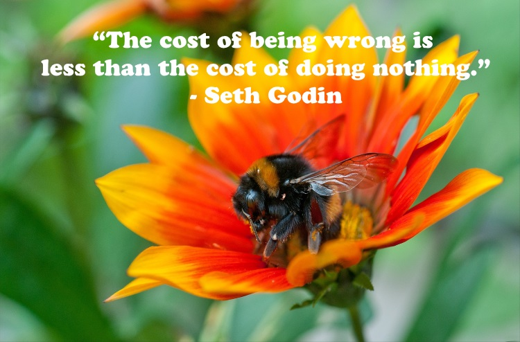 Marketing Quotes - The cost of being wrong is less than the cost of doing nothing - Seth Godin