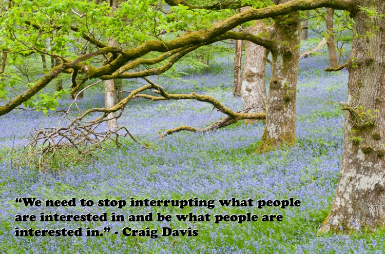 Marketing Quotes - We need to stop interrupting what people are interested in and be what people are interested in - Craig Davi